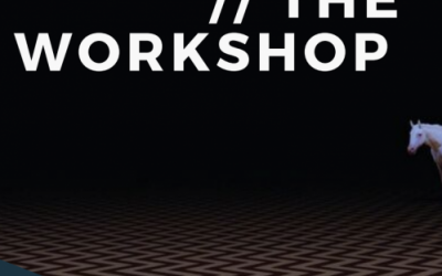 TW – THE WORKSHOP is this week (and programme is available)!!